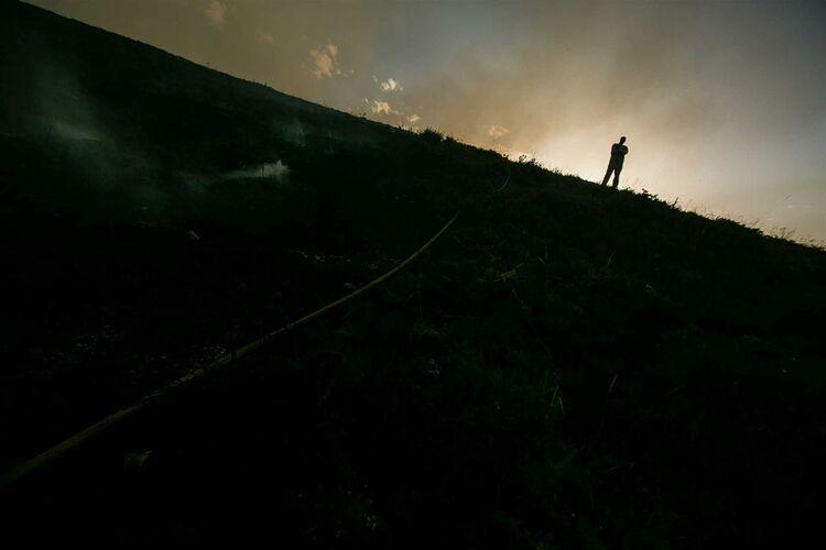 Pj detido sapador florestal por suspeita de ter ateado for 500 hillside terrace bessemer al