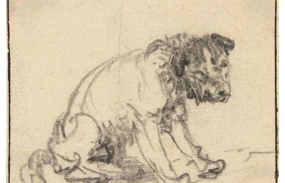 Resultado de imagem para Obra de Rembrandt de quase 3 séculos é descoberta por museu alemão