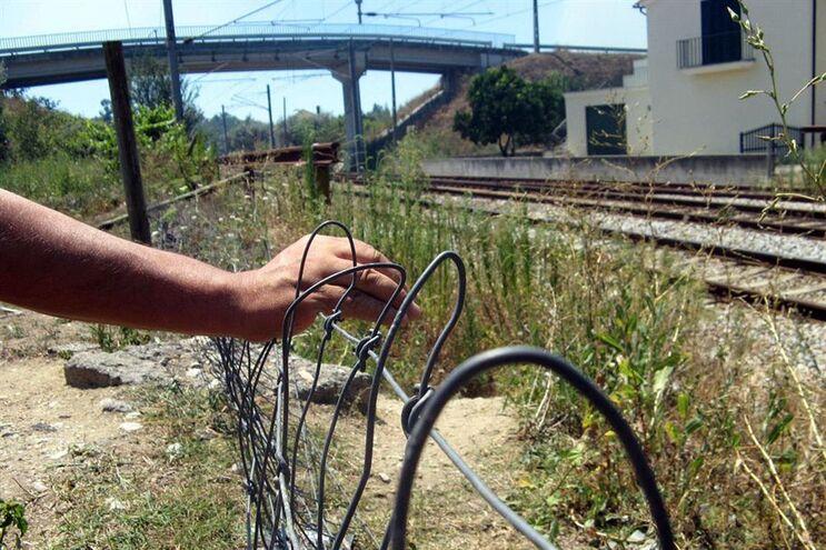 Resultado de imagem para Descarrilamento de comboio de mercadorias suspende circulação na Linha da Beira Alta