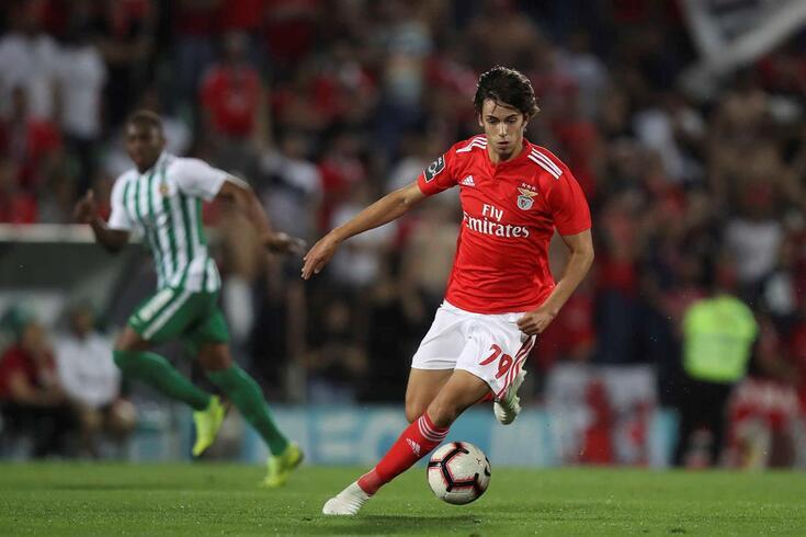 João Félix será oficializado como reforço do Atlético de Madrid