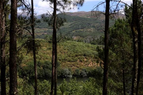 Nove montanhistas perdidos na Serra do Gerês