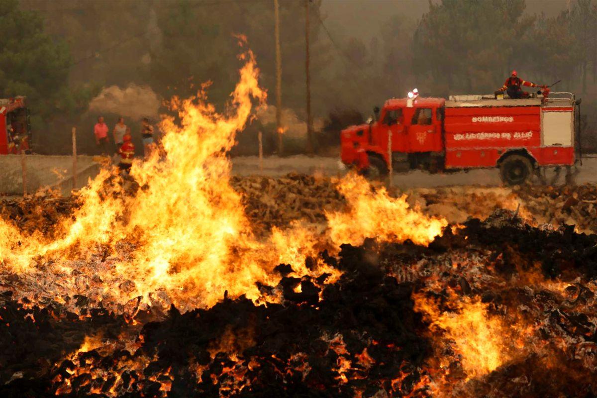 Resultado de imagem para Incêndios: Presidente da Câmara de Alijó vai declarar Estado de Emergência Municipal
