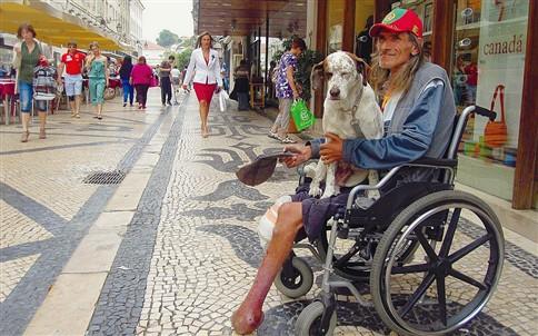 Esgazeada, a cadela que puxa pela vida de Francisco