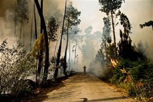 Bombeiros combatem 28 incêndios