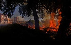 Quatro fogos ativos e a consumir mato