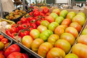 Dieta mediterrânica pode ajudar a uma boa memória