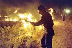 GNR investiga bombeiros