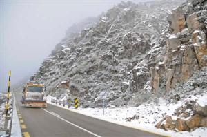 Neve encerra três troços rodoviários na Serra da Estrela