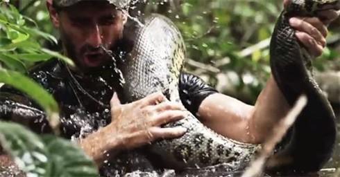 Serviu de jantar a uma anaconda e sobreviveu para contar