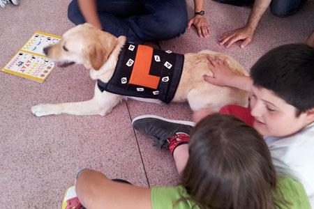 Autismo: Terapia assistida por cães