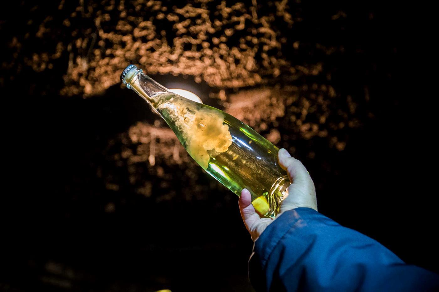 Remuage nas Caves Raposeira, os maiores produtores de vinho espumante nacional.