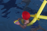 """Escolas de natação, ministradas pelos Serviços Municipais, """"não entrarão em funcionamento para já"""""""