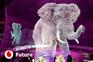 O circo com animais virtuais