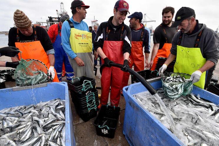 Portugal recebe menos 14 milhões de euros para pescas no próximo orçamento da UE