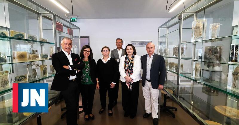 ICBAS reabilita edifício histórico no próximo ano