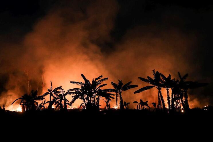 Incêndio florestal em Porto Velho, estado da Rondônia, na Amazónia brasileira