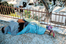 """""""Há crianças a dormir em campas do cemitério"""" na ilha grega de Lesbos"""