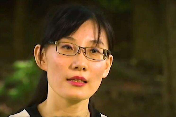 Cientista Li-Meng Yan
