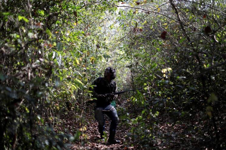 Número de assassinatos de lideranças indígenas é o maior em pelo menos 11 anos