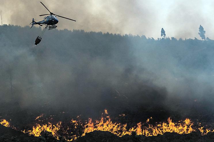 Proteção Civil contratou hélis sem retardantes para apagar fogos