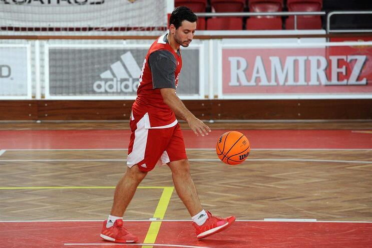 Tomás Barroso