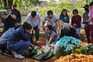 Brasil com mais 1237 óbitos, aproxima-se das 100 mil vítimas da pandemia