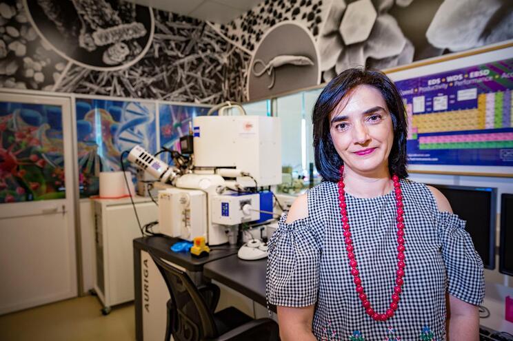 Elvira Fortunato, professora e investigadora portuguesa