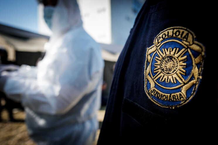 PJ deteve homem de 59 anos suspeito de violar idosa de 90 anos   ( Nuno Pinto Fernandes/ Global Imagens