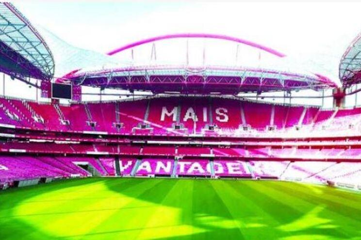 Estádio da Luz tem novo relvado