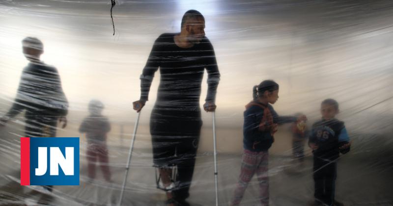 """Israel e Palestina: """"Atreve-te a sonhar... com a liberdade"""""""