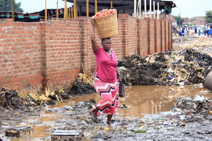 Pandemia pode causar mais 500 milhões de pobres no Mundo