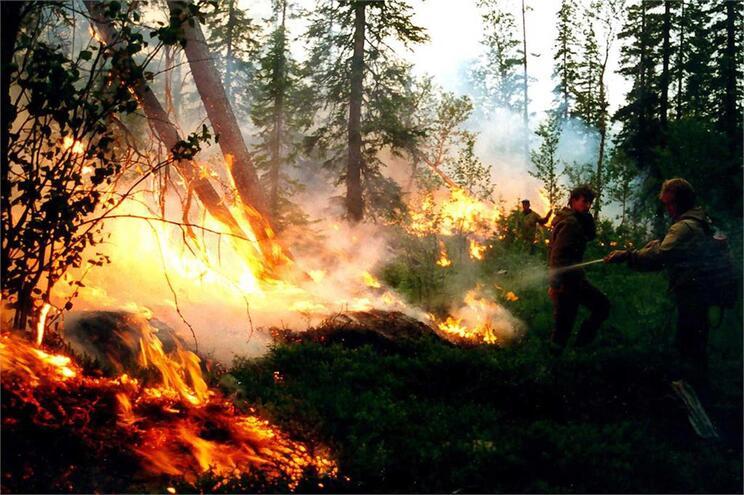 A par do aumento das temperaturas, têm aumentado os incêndios florestais