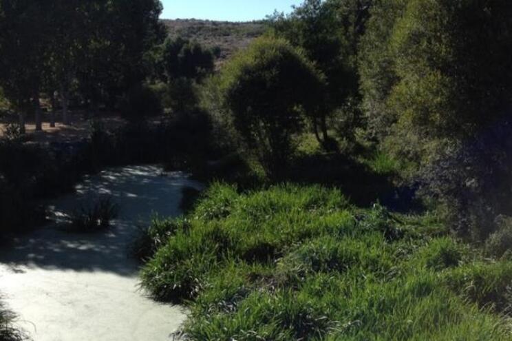 Obras de despoluição dos rios Diz e Noéme avançam para a semana