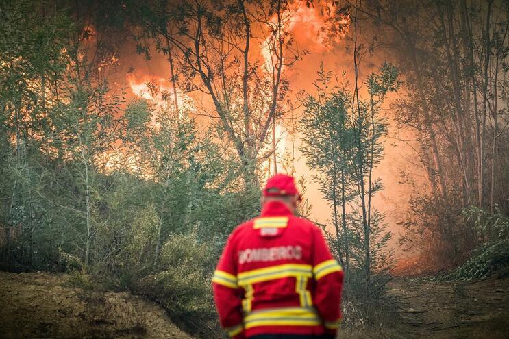 Dominado fogo no concelho de Nisa