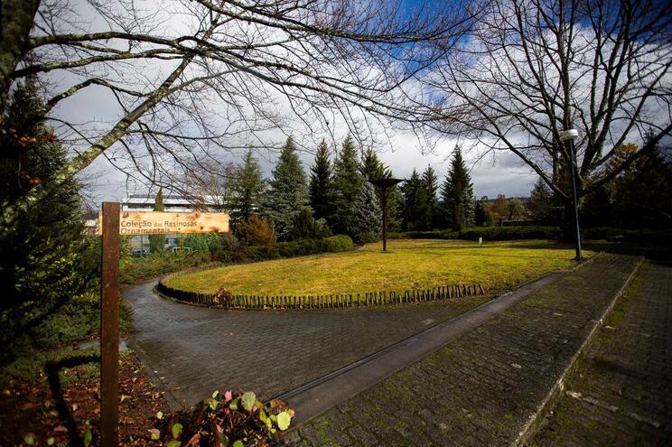 UTAD quer campus carbono zero até 2030
