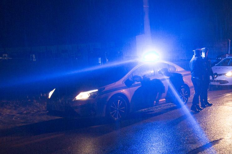 Touro fugiu do matadouro, provocou acidente na A25 e foi abatido pela GNR