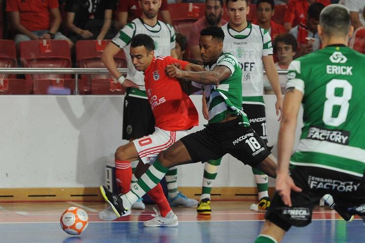 Miguel Albuquerque queixa-se de tentativas de agressão por parte dos adeptos do Benfica