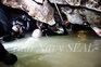 Novas imagens da operação de resgate numa gruta na Tailândia