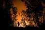 Bombeiro de Miranda do Corvo desaparecido em incêndio na Lousã