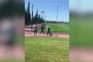 Adeptos detidos após agressões a jogadores e treinadores do Sporting