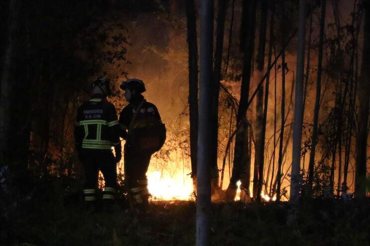 Mais de mil fogos com origem em queimadas fizerem três mortos em 2019