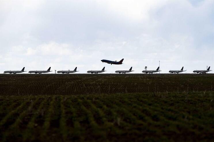 """Deco considera ser ainda necessário """"clarificar"""" a situação dos voos anulados"""