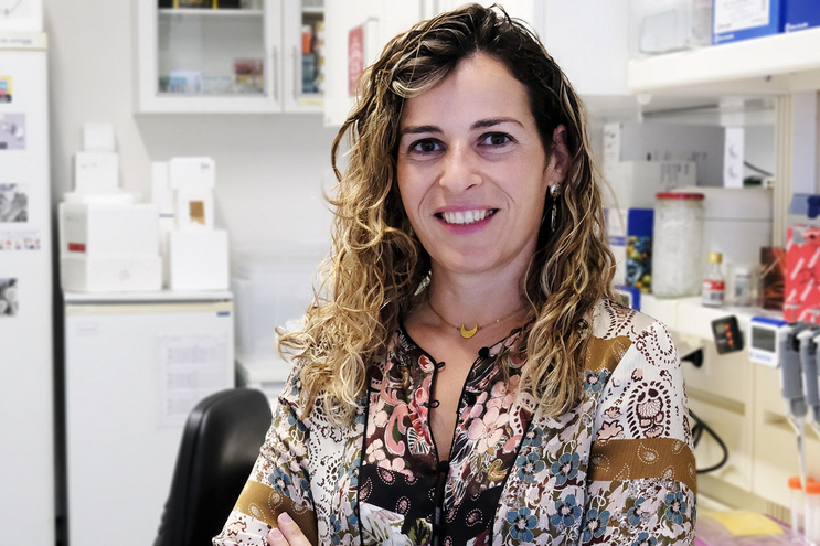 "Salomé Pinho, líder do grupo ""Immunology Cancer & GlycoMedicine"" do i3S"