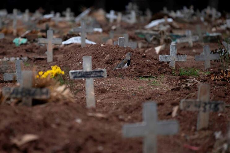 Brasil ultrapassou os 14 mil mortos de covid-19