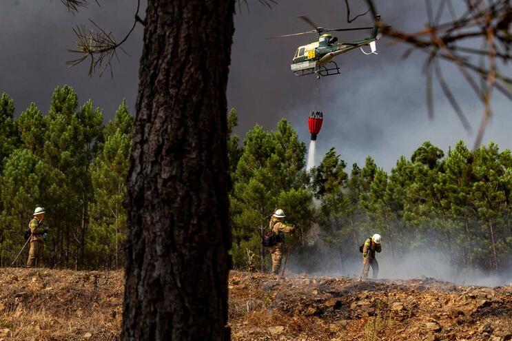Incêndio em Mação, Santarém