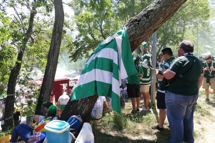 Adeptos do Sporting fazem a festa