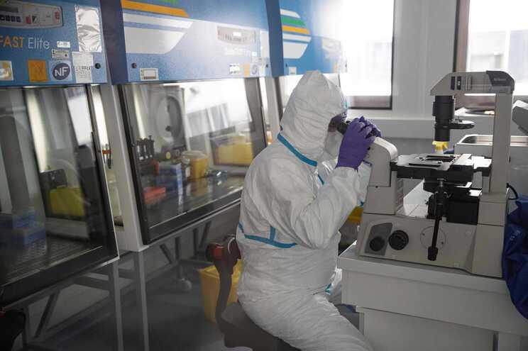 Objetivo dos investigadores é agora avaliar se a resposta imunitária do corpo se mantém a longo prazo