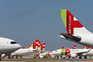 Só um em cada 20 passageiros no aeroporto do Porto viaja na TAP