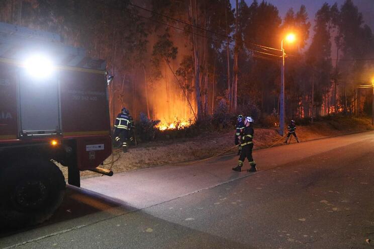 Governo proíbe queimadas até domingo devido a risco de incêndio florestal