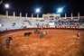 Proibição do apoio público às touradas nas mãos do PS